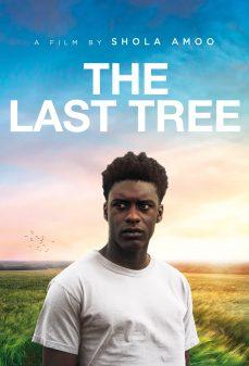 مشاهدة وتحميل فلم The Last Tree اونلاين