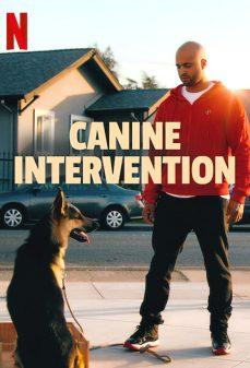مشاهدة وتحميل فلم Canine Intervention اونلاين