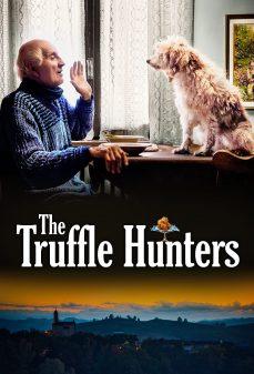 مشاهدة وتحميل فلم The Truffle Hunters اونلاين